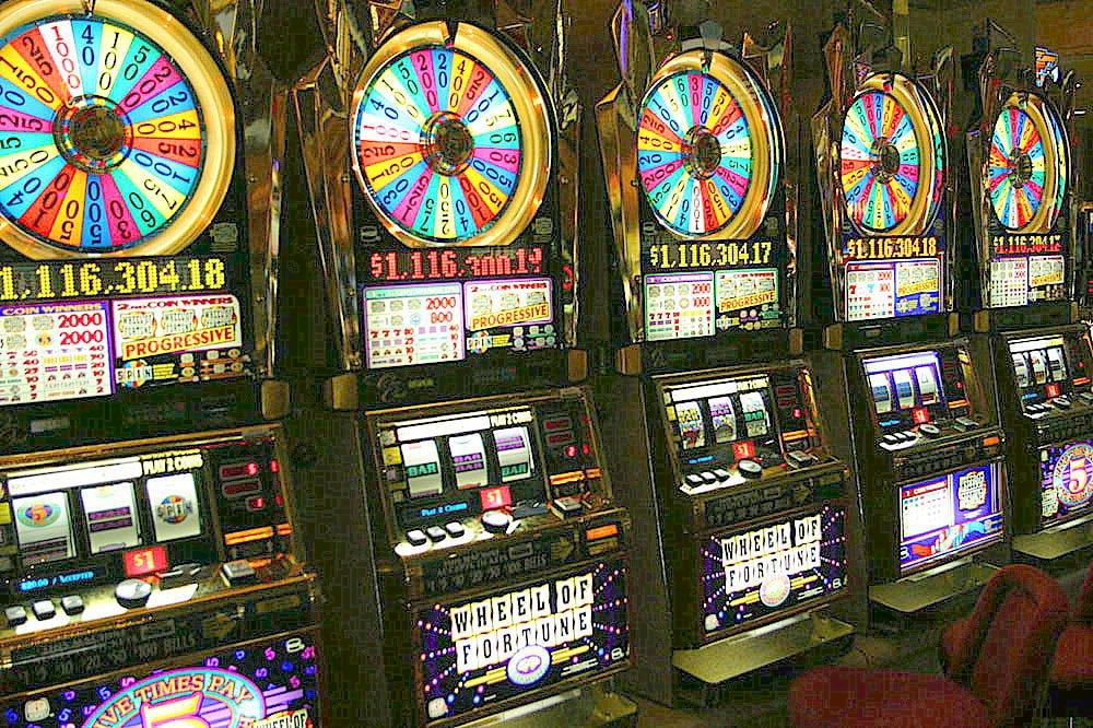 Dingo casino $14 free